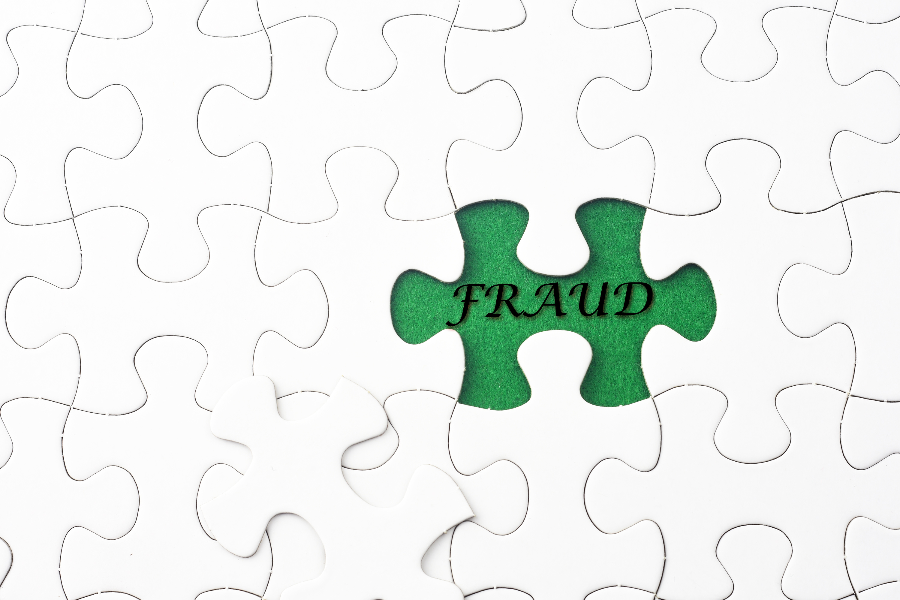 Expense Fraud Puzzle
